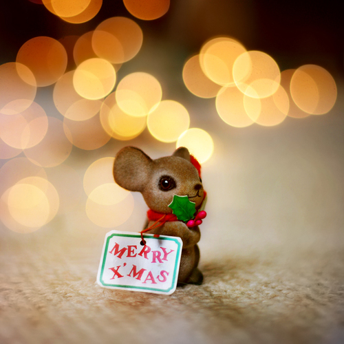 Feliz Navidad Siempre Asi.Feliz Navidad Princesasamaria